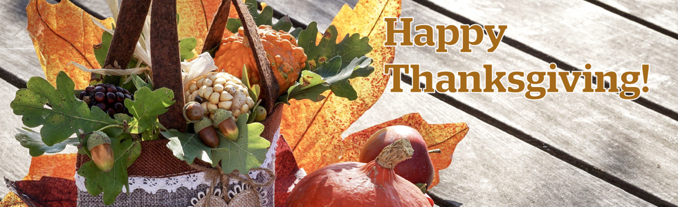 Thanksgiving Holiday banner.